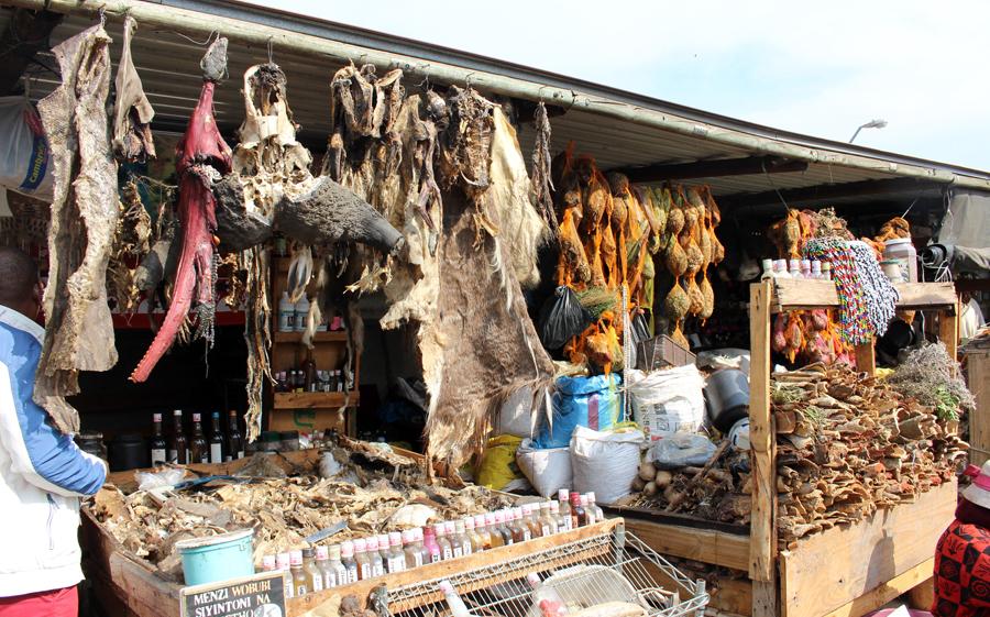 Durban's medicine market