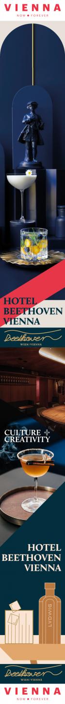 Vienna - Background skins (RIGHT) (newsletter)- June 21-27 2021 Beethoven