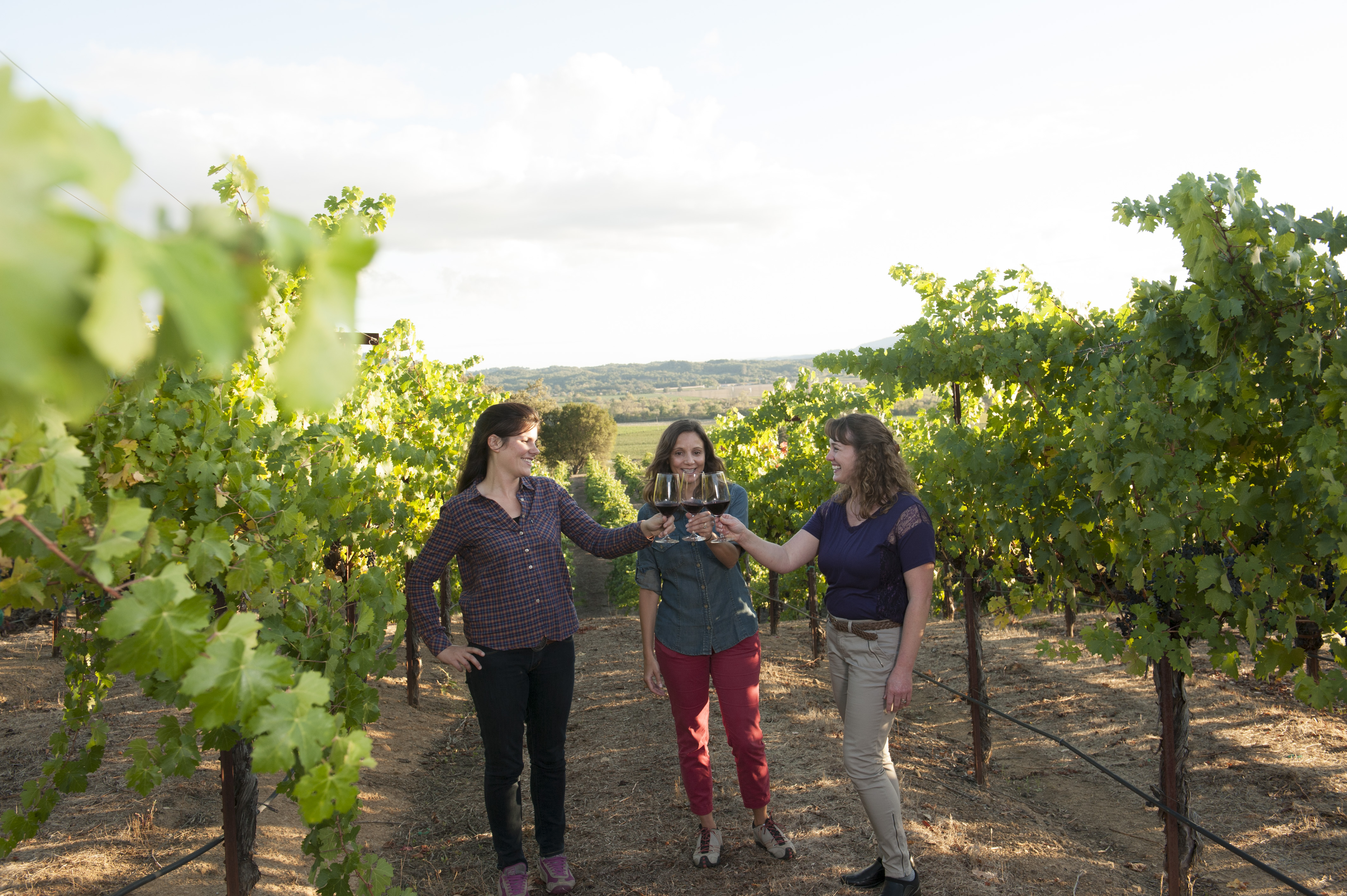 There are more than 425 wineries in Sonoma County, making the destination an incredibly popular destination for wine enthusiasts. Photo: Sonoma County Tourism.