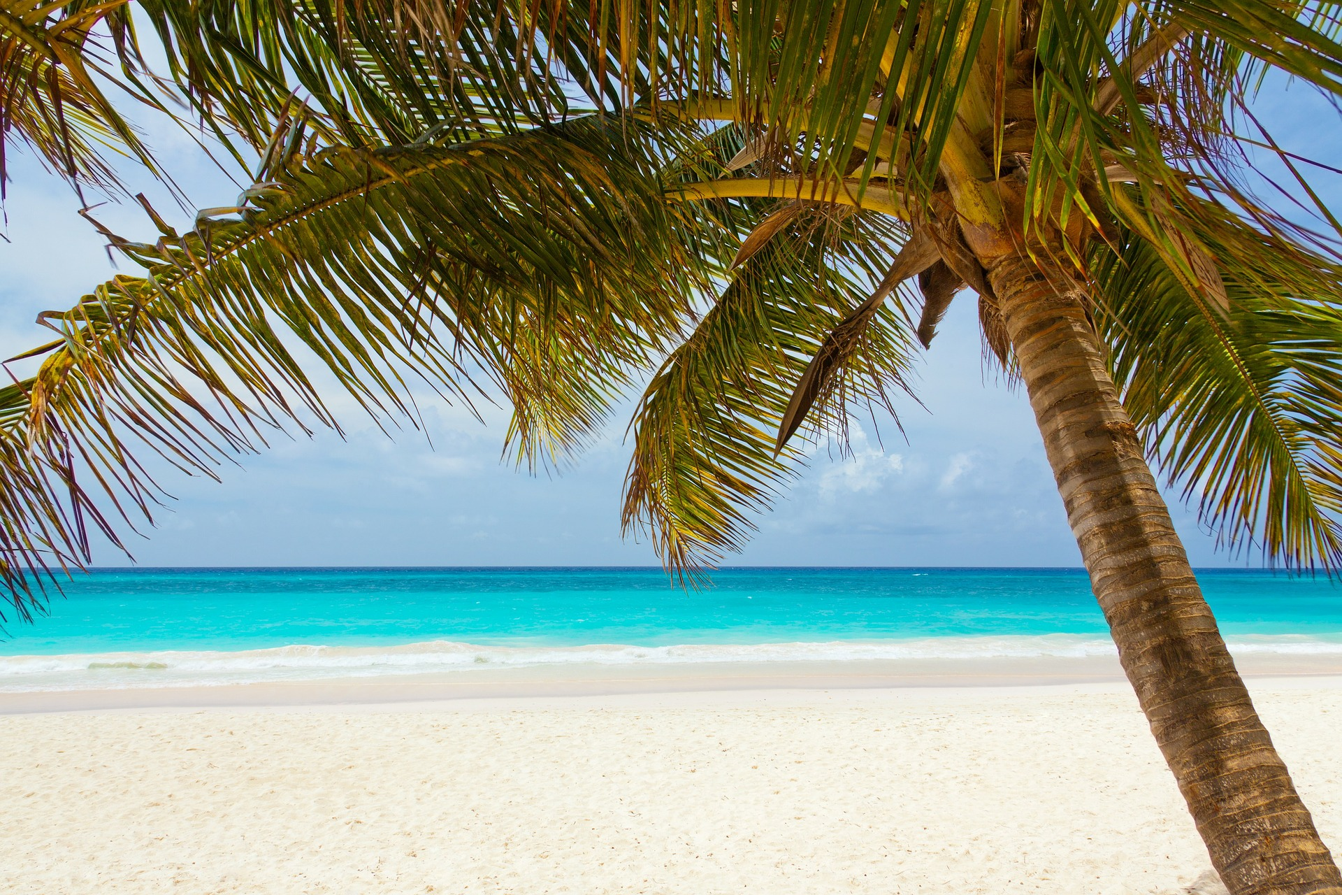 ACV offers StormGuard protection for Mexico & Caribbean destinations