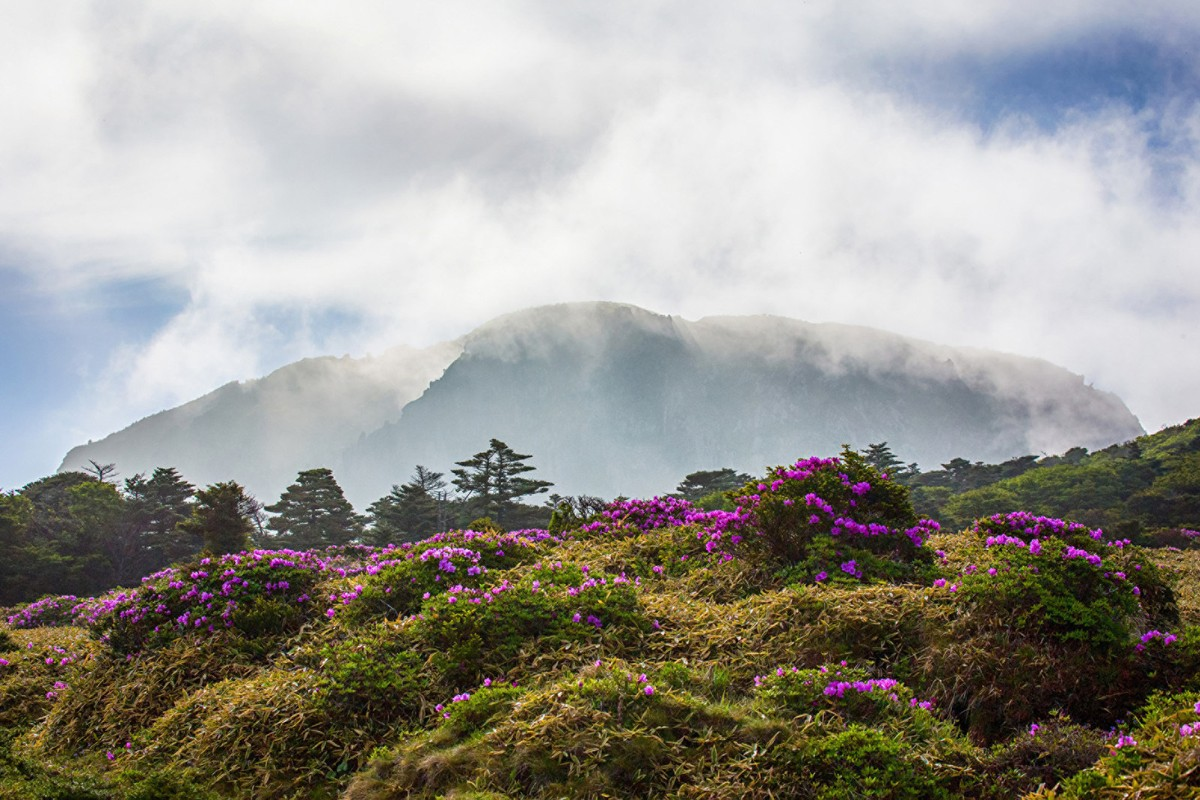 Four Seasons bringing luxury resort to Korea's Jeju Island