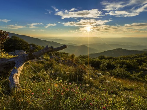 Virginia Tourism on Charlottesville events: 'Virginia is for Everyone'