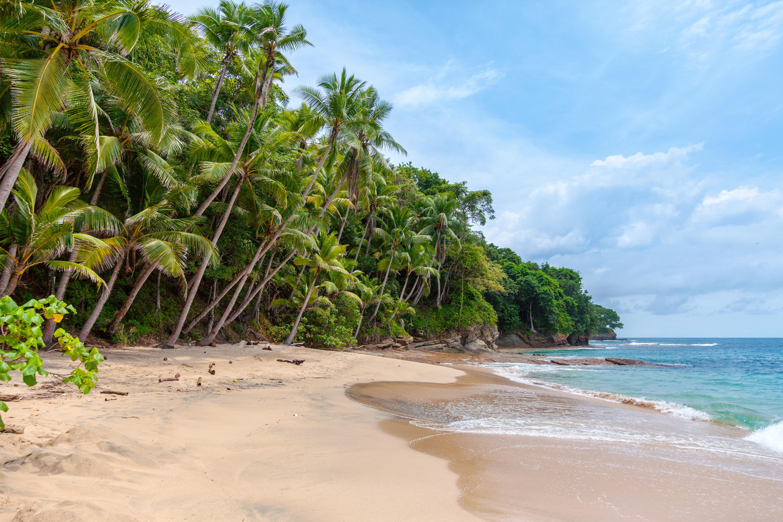 CHTA responds to Caribbean tourism boom