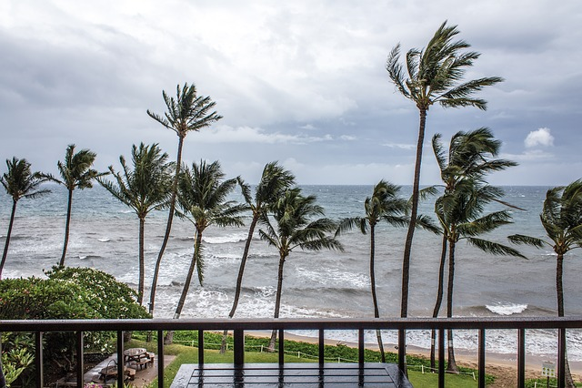 Tropical Storm Lidia strikes Los Cabos