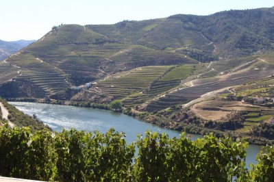A River Cruise for Wine Lovers