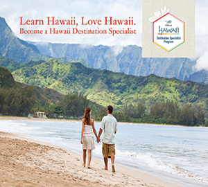 Hawaii Tourist Board - (Vox)  In-feed