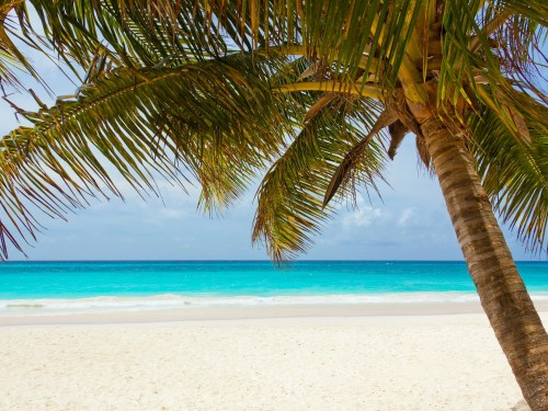 HAL's Caribbean air credit promo for Canadians on now