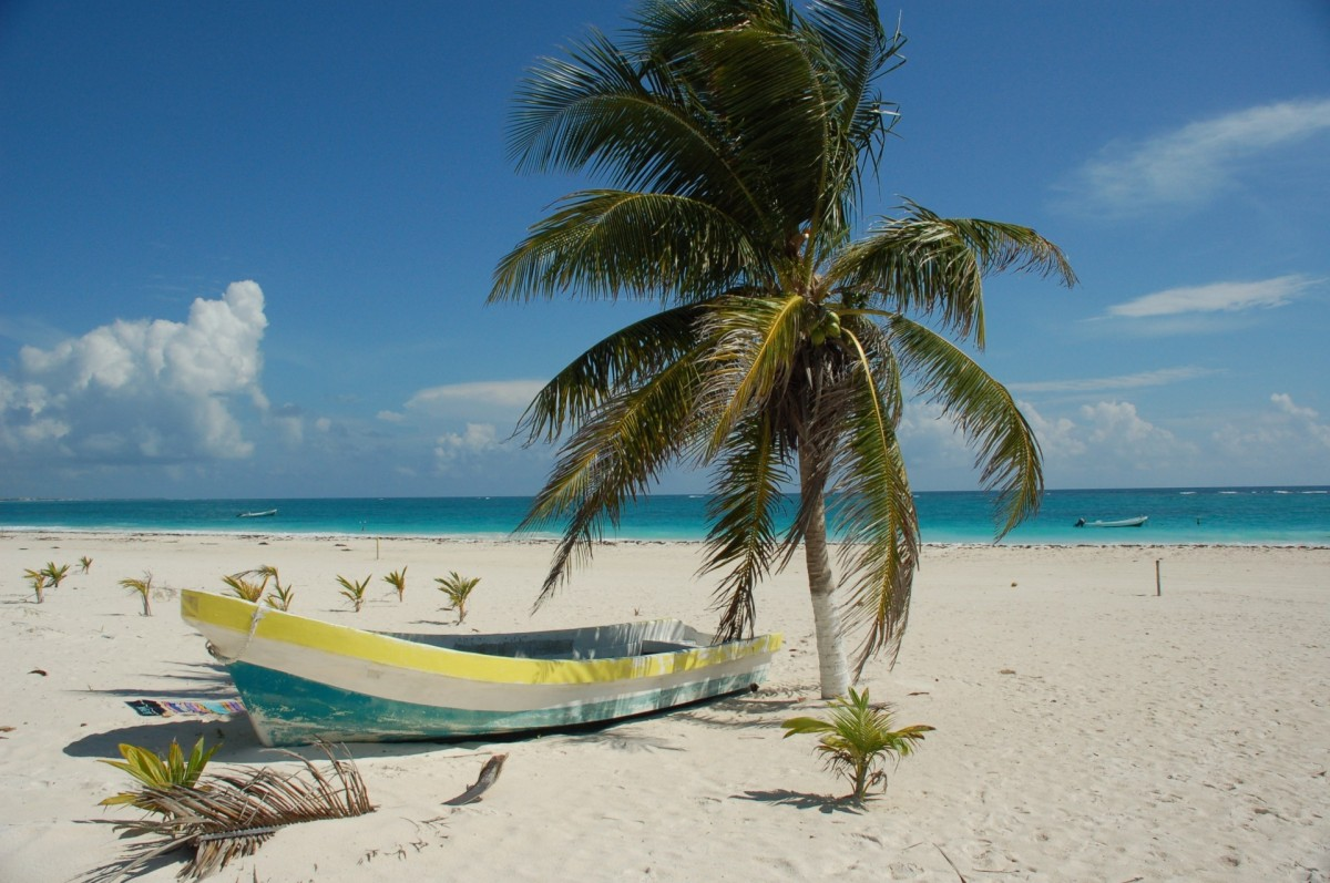 Transat buys land in Puerto Morelos for hotel development