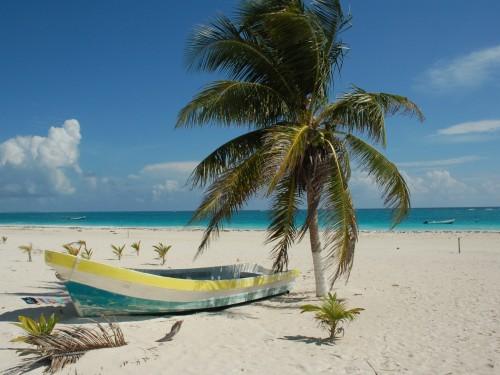 Transat buys land in Puerto Morelos for hotel development