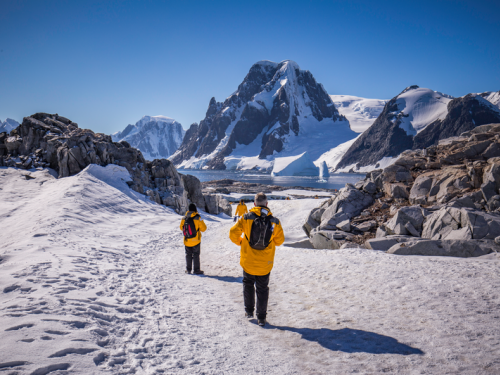 Agents can win a $10,000 Arctic adventure from Intrepid Travel