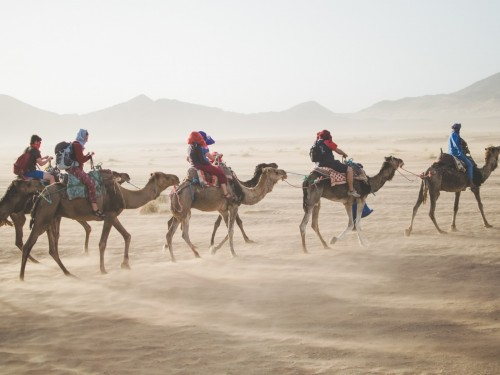 Agents, this is how you sell more trips to Morocco