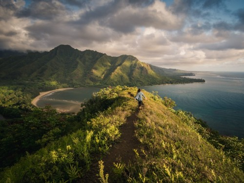 TravelBrands offering agents up to 35% off Hawaii