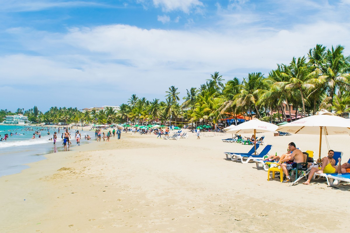 Dominican sees 8% growth from North America