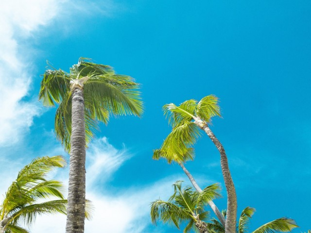 Sunwing offering 3X the points to the Dominican Republic