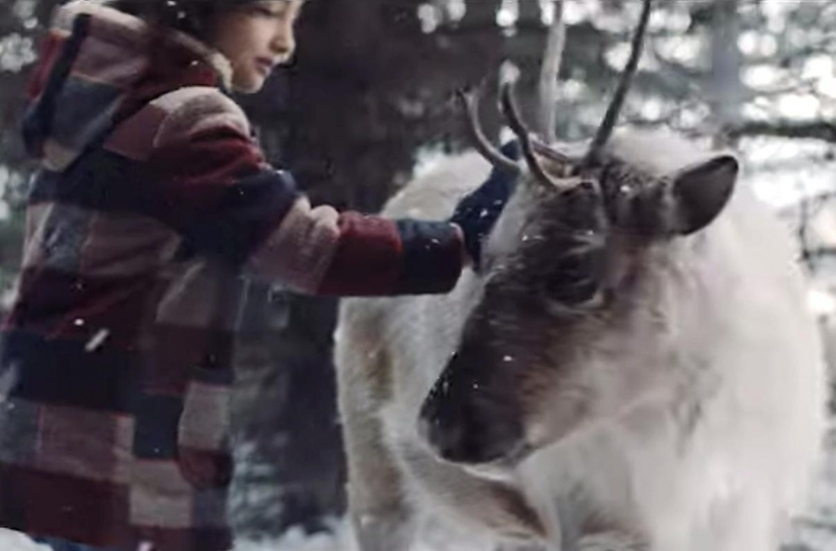 """VIDEO: Air Canada celebrates holiday magic with the """"Lost Reindeer"""""""