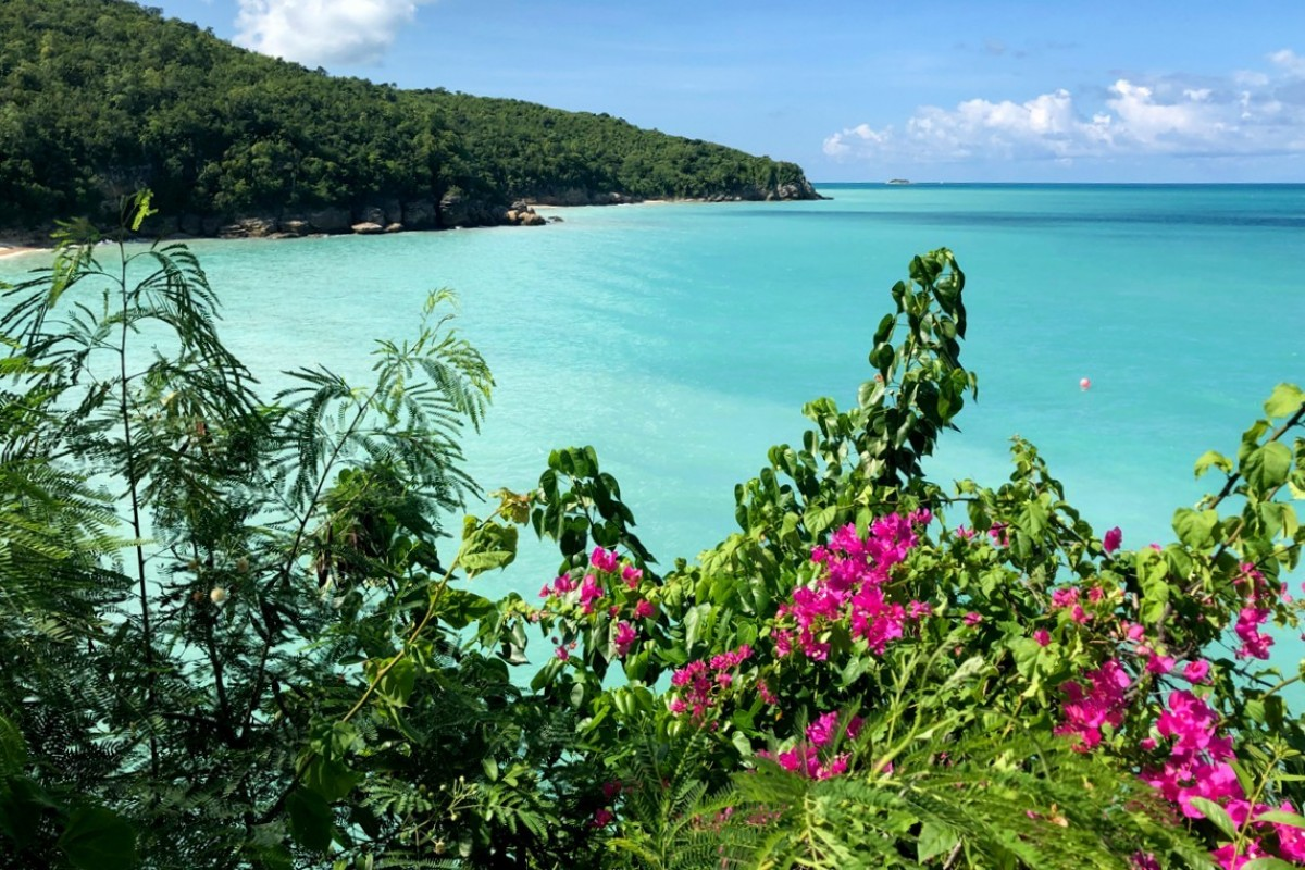 Antigua & Barbuda Tourism Authority launches interactive webinars for Canadian agents