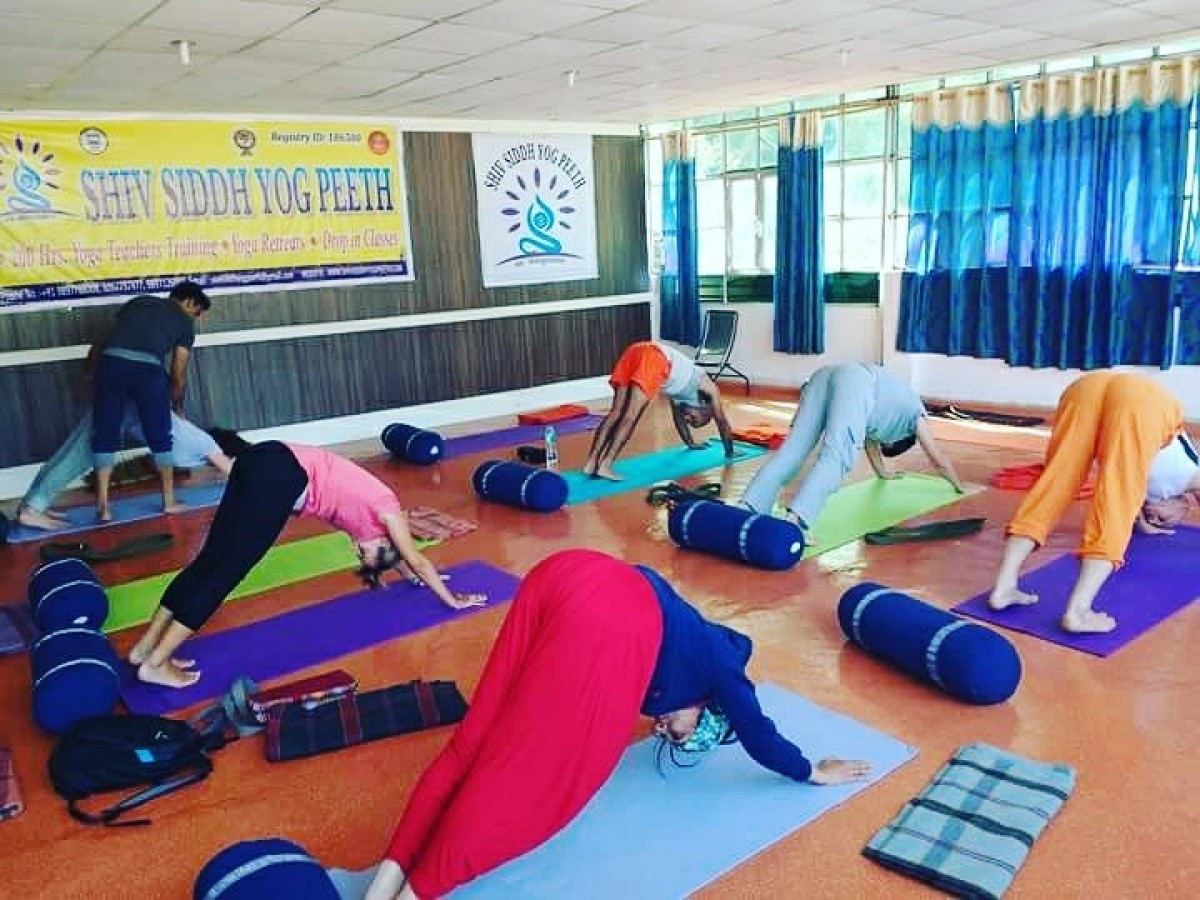Pax Vinyasa Yoga Teacher Training School In Rishikesh India