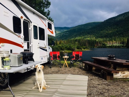 Not sure what to sell this summer? Consider booking an RV holiday