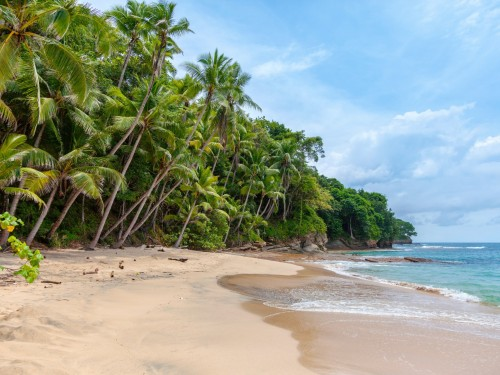 """A """"different kind"""" of tourism is coming to the Caribbean, CTO says"""