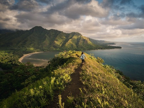 Hawaii lifts quarantine measures for trans-Pacific travellers, starting September