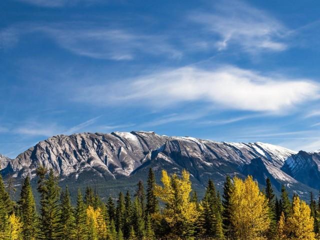 Tourism coalition urges B.C. not to pursue domestic travel ban