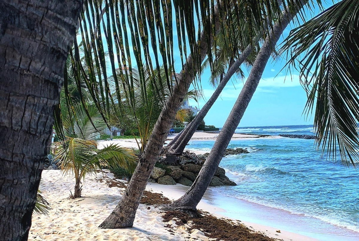 Barbados updates protocols for vaccinated/non-vaccinated travellers